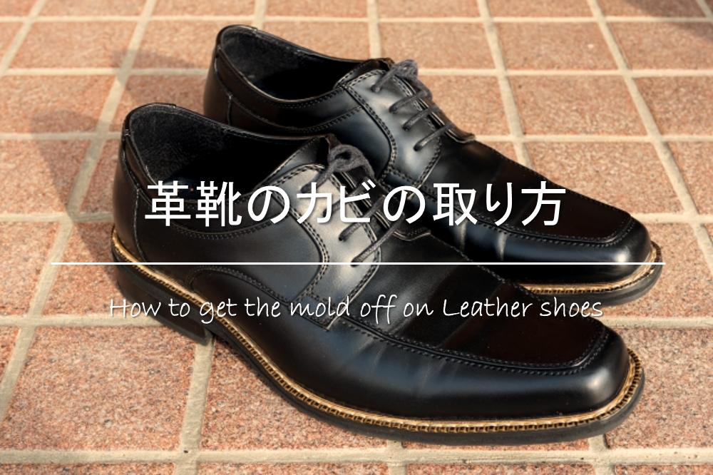 【革靴のカビの取り方】エタノール&重曹を使った落とし方!!カビ防止対策も!