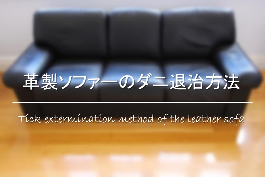 【革製ソファーのダニ退治方法】本革や合皮のダニを駆除!!掃除方法&予防法を紹介!