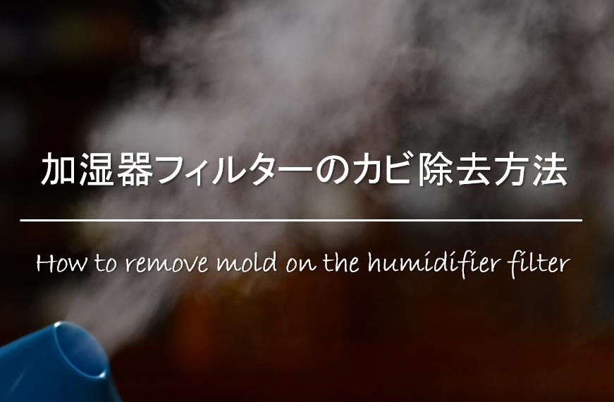 【加湿器フィルターのカビ除去方法】簡単!おすすめの掃除方法を紹介!