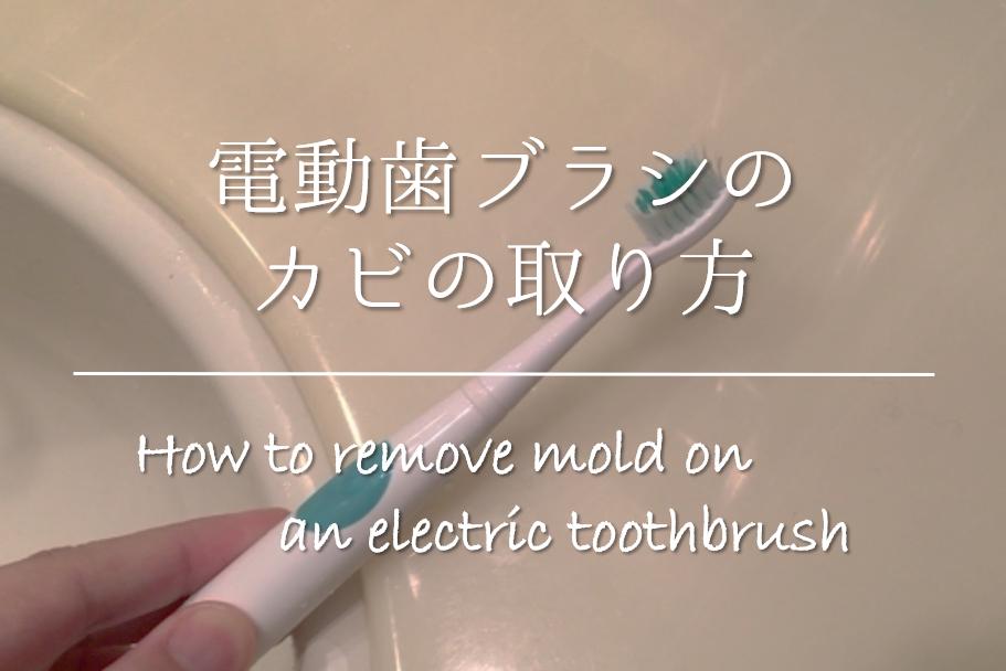 【電動歯ブラシのカビの取り方】簡単!!効果的なお手入れ方法やカビ対策を紹介